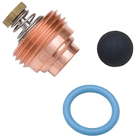Haws VRK5871 - Valve Repair Kit for Model 5871